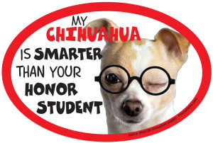 Honor Student Dog Magnets